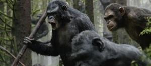 La planète des singes - l'Affrontement 03