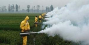 Monsanto-Bayer 01